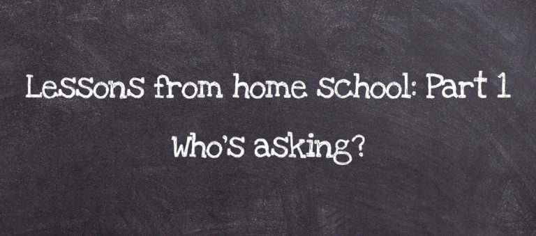 Lessons from Homeschool Part 1: Who's asking?